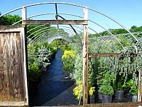 EVERGREEN HOOP HOUSE